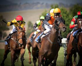 Horseracing72dpi